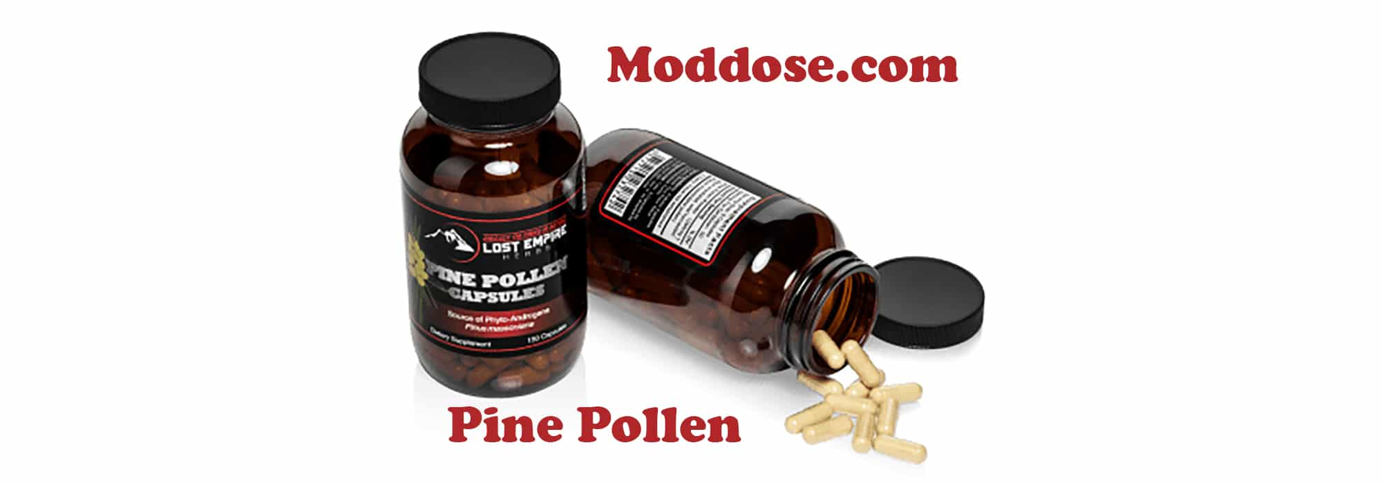 What is Pine Pollen